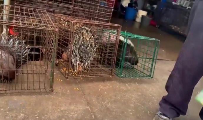 שוק בתאילנד