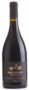ספיישל קווה 2013 2013 - בקבוק