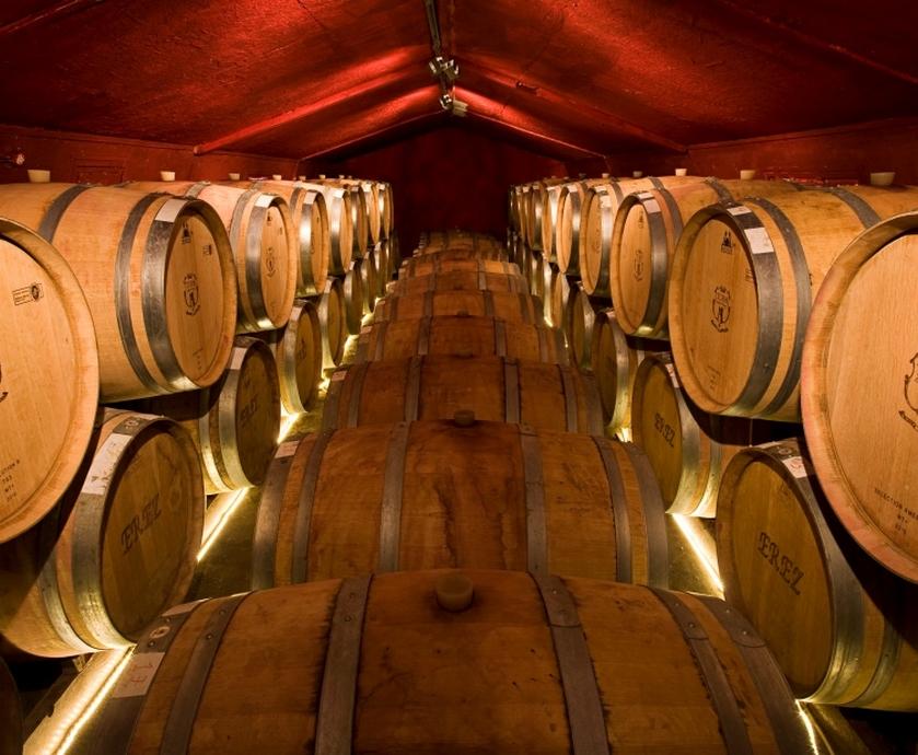 """כשמדברים על יקבים, צריך לקרוא לקו הירוק """"קו היין"""", צד אחד ירוק ובצד השני יין... (צילומים: יח""""צ)"""