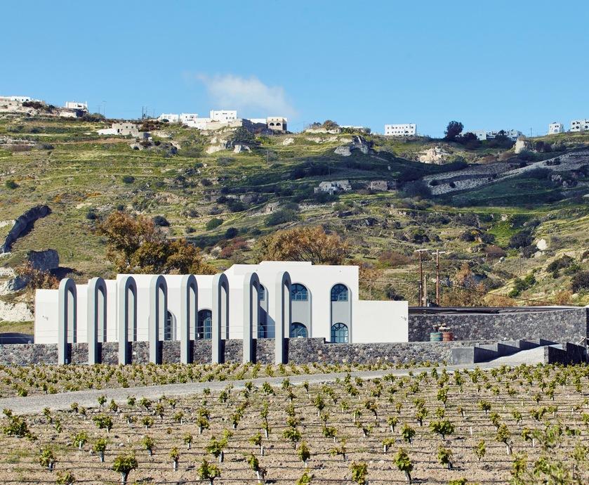 """היינות של יוון - יין היה חלק חשוב בהתפתחות החברה היוונית עוד מימי קדם, על כך מעידים שרידי ענבים עתיקים (צילום:יח""""צ)"""