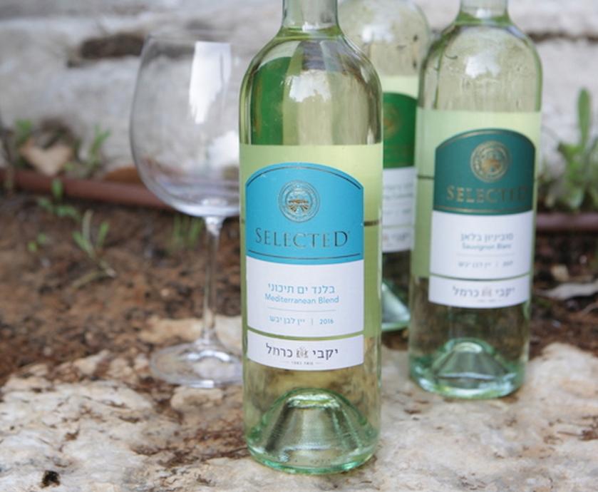 """סלקטד - פרי טוב מכרמים רבים ושימוש בטכנולוגיה מתקדמת מאפשרים לייצר יינות טובים בכל רמת מחיר (צילום: יח""""צ)"""