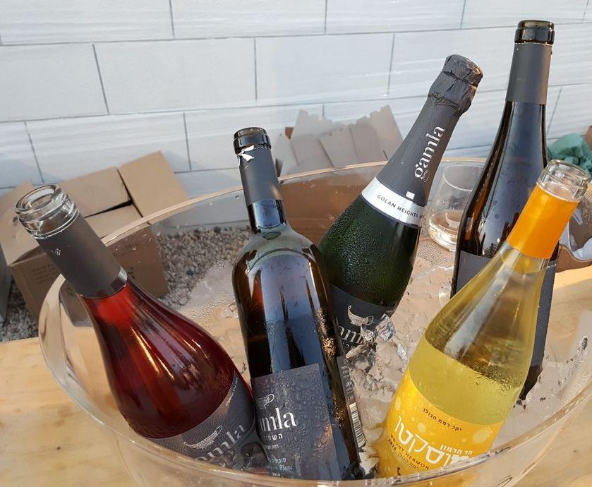 תערוכת היין בירושלים - אני בהחלט חושב שמוטב לתת לאנשים את מה שהם אוהבים ורוצים לשתות - העיקר שיתרגלו לשתות כוס יין...