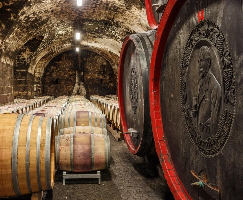 """בוזן - ביקב 'קנטינה בולצאנו' מצליחים לשמר היטב את מסורת עשיית היין האזורית של אלטו אדיג'ה... (צילומים: יח""""צ)"""