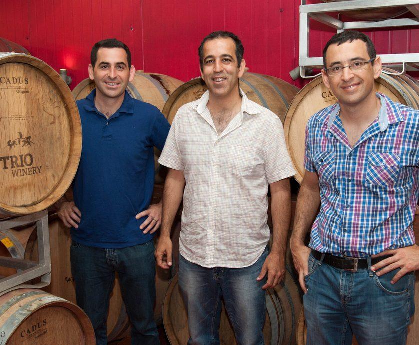 סדרת רמים - אם אנשים רוצים יינות רעננים עם תכולת אלכוהול צנועה, אז למה לא לתת להם? (צילום: עודד יעקבי, איל קרן)