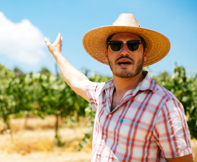 """יינות דלתון מסדרת 'עלמה', למשל, הפכו להיות מטובי היינות המקומיים בעיני, הרבה מעבר לסתם יין שנותן אחלה תמורה למחיר... (צילום: יח""""צ, פביאנה קוקוביי)"""