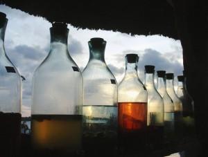 אלכוהול - אווירה א - צילום פרי אימג