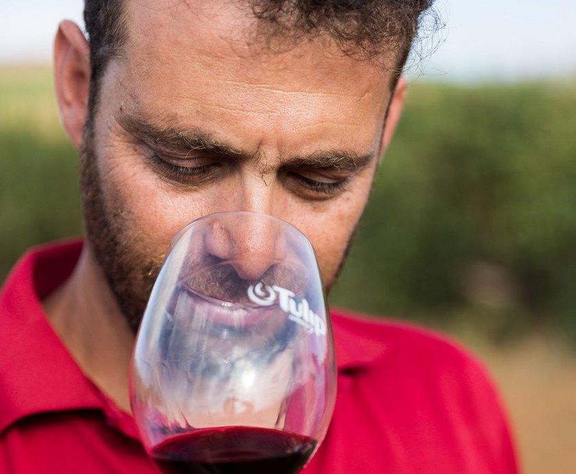דוד בר אילן - כשמדובר ביין צריך להישאר ברקע. היינות הם העניין, עד שאתה יכול להכניס את הזווית שלך (צלם: אורי שדה)