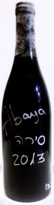 עבייה סירה 2013 - בקבוק