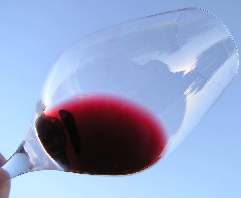 """בקרו פעם אחת במסעדה עילית באירופה ותגידו לי כמה כסף שילמתם שם על כוס יין... (צילומים: יח""""צ, freeimages.com)"""
