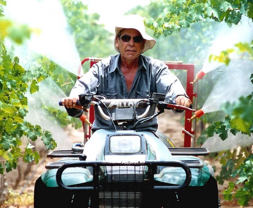"""ליין היה טעם של יין גדול מבורגון, מקום שבו, כידוע, לא ממש משתמשים בענבי קברנה פרנק... (צילומים: יח""""צ)"""
