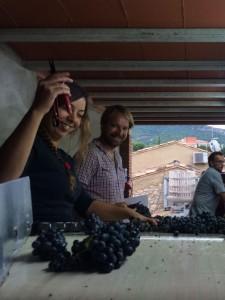 יינות פריוראט ספרד - אווירה