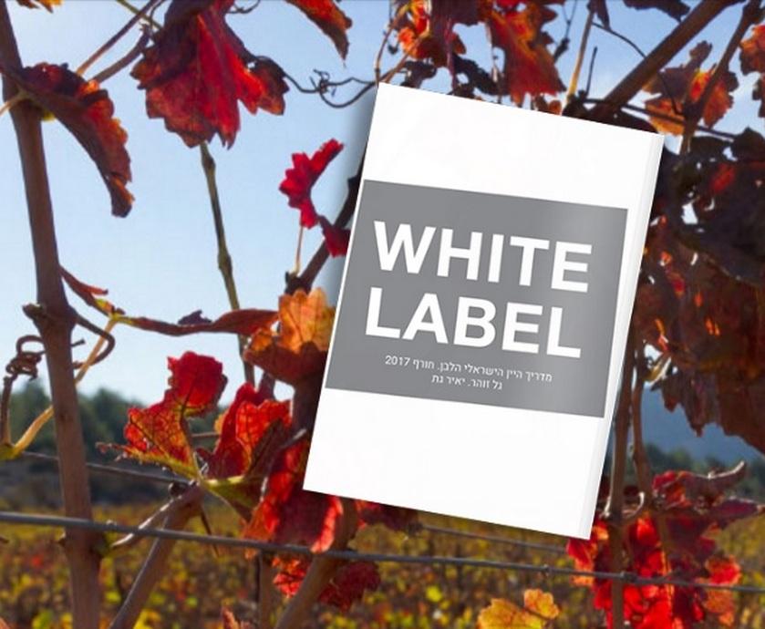 """מדריך יין לבן - איך שלא מסתכלים על זה, ציונים זאת שיטה לגמרי מחורבנת, אבל האמת היא שאין דרך אחרת... (צילום: יח""""צ)"""