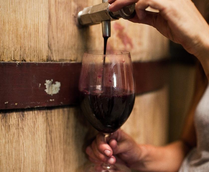 """את היין חילקנו אז לשתי משפחות: לבנים שעושים כאב ראש ואדומים שעושים צרבת... (צילומים: יח""""צ)"""